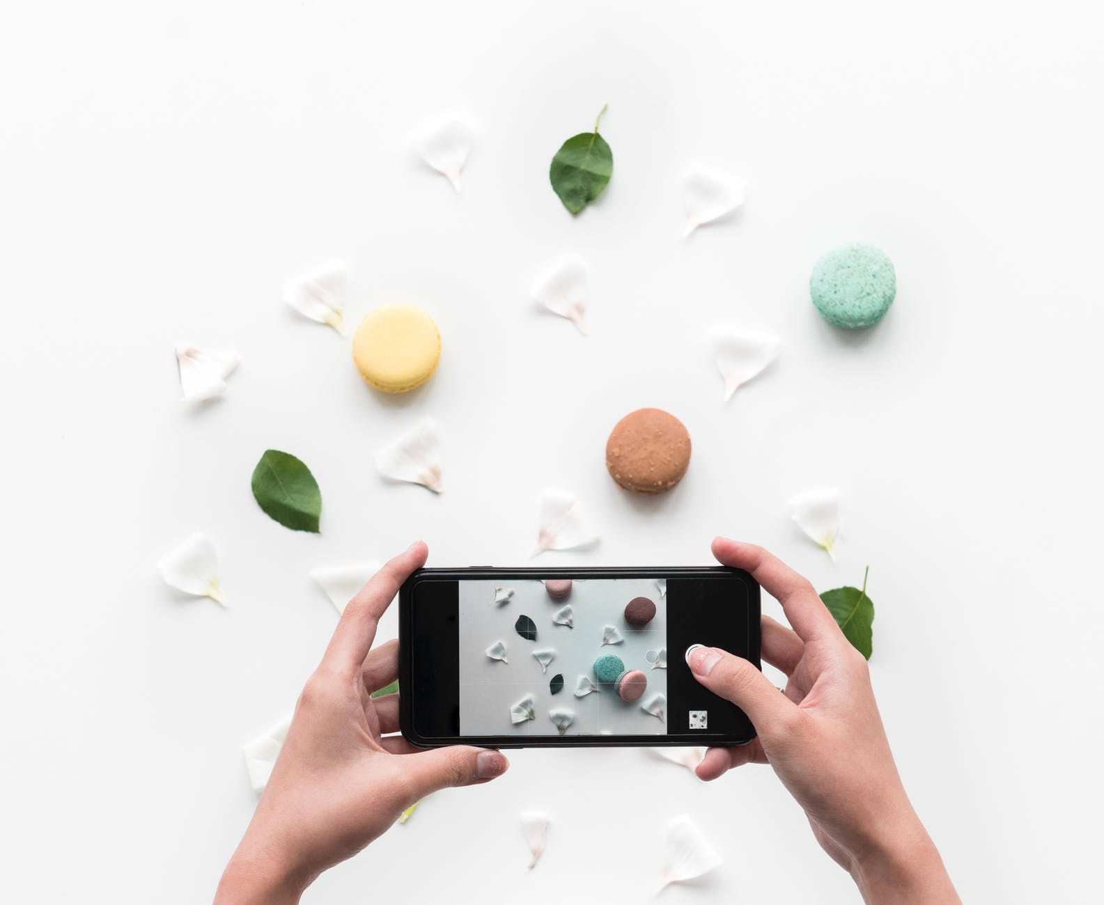 person taking photo of food and petals through smartphone